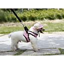 Buy Wide Selection Original Colorful Light Orange Pet Harness Dog Vest Clothing Puppy Summer Wear