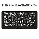 Buy Nail Art Stamping Plates Polish Print Stencil Stamp Template DIY Beauty Manicure Tools (Tian Xin 19-24)