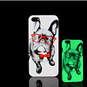 Buy Pug Dog Pattern Glow Dark Hard Plastic Back Cover iPhone 5 5s Case