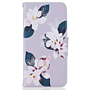 Buy Flower Pattern Material PU Card Holder Leather iPhone 7 Plus 6s 6 SE 5s 5 5C 4S