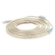 5M은 마개를 가진 3000K 온난 한 공정한 판단 PCB 방수 LED 지구 빛 (220V)를 300x5050SMD