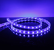Impermeable 10W / M 5050 SMD LED Strip Light Blue Lamp (220V, seleccionable longitud)