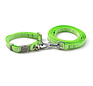 Dog Leash Green / Blue / Brown / Pink / Yellow Plastic