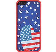 Heart-Shaped Style the Old Glory Pattern 2 in 1 Bumper and Back Case for iPhone 5/5S