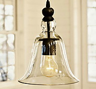 Vintage Pendant Light antique Glass Shade