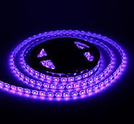 Waterproof 5M 60W 60x5050SMD 3000-3600LM Blue Light LED Strip Light (DC12V)