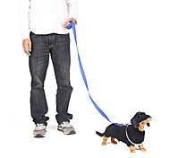 Fashionable Outdoor Nylon Leash for Pets Dogs (Assorted Colors)