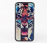 Colorful Tiger Head Back Case for iPhone 5C