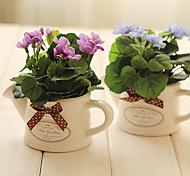"""6.5 """"mini arrangement floral de bégonia (violet)"""