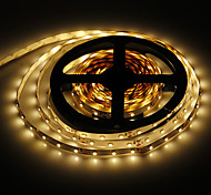 5M 24W 60x3528SMD 900-1200LM 3000-3500K Warm White Light LED Strip Light (DC12V)