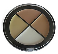 Professional 4 Colors Face Concealer Cream Cake Natural Color 02#