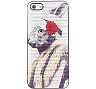 Unique Rabbit Design Aluminium Hard Case for iPhone 4/4S