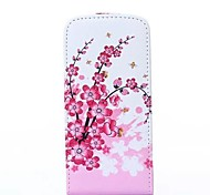 Plum Flower Pattern PU Leather Full Body Case and Card Slot for iPhone 6