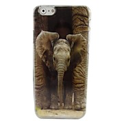 A Mighty Elephant Plastic Hard Back Cover for iPhone 6