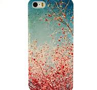 artistico albero di ciliegio modello custodia in plastica dura per iPhone 5 / 5s