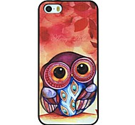 Baby Owl Pattern PC Hard Back Cover Case for iPhone 5/5S