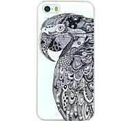 Serious Parrot Pattern PC Hard Back Cover Case for iPhone 5/5S