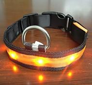 Adjustable Fashionable Flashing Nylon LED Light Pet Dog Collar Safety Collar for Christmas (DD-WT, Orange, M)