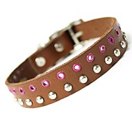 Genuine Leather Collar for Pets Dogs