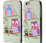 Lovely Two Owls Fashion Vertical Style Magnetic Flip PC+PU Leather Case for iPhone 6