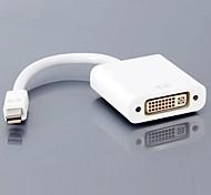 Mini DisplayPort to DVI Adapter Cable (15cm)