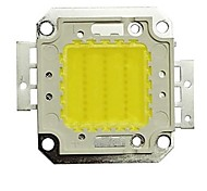 30w 6000k 2700lm LED cool white puce (30-35v)