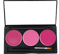 3 cores Nourshing hidratação profissional lábio geléia gloss maquiagem paleta cosmética com espelho&Jogo de escova 10 #