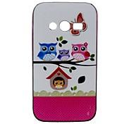 2-in-1-Eulen Familie Muster TPU rückseitige Abdeckung mit pc autostoßfest weiche Tasche für Samsung Galaxy Ace 4 g313h