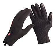 Guanti da sci Dita intere / Invernali Per uomo / Tutti Guanti sport Tenere al caldo / Anti-slittamento / Anti-vento / Guanti touch