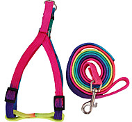 Cody  Rainbow Style Durable Nylon Leashes with Harnesses for Pets Dogs