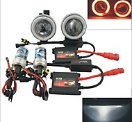 Carking™ 12V 35W HID Headlamps Car Projector Fog Lamps Kit with Red Light CCFL Angel Eyes (Pair)