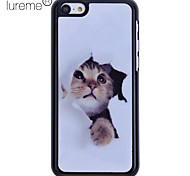 Mysterious Cat Pattern Back Case for iPhone 5C