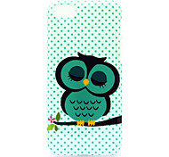 A Cat Pattern Soft Case for iPhone 5C