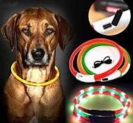 Dog Collar LED Lights Red / Green / Blue / Yellow Nylon