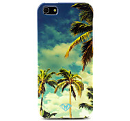 Sky Coconut Tree Design Durable TPU Soft Cover Case and Mini Display Stand with Diamond Dust Plug for iPhone 5/5S