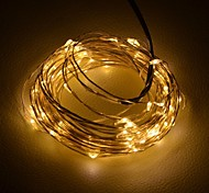 [2PCS/Lot] 6W 10M 100xSMD3528 Warm White Silver Wire LED String Light for Decoration(DC12V)