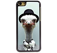 Lovely Ostrich Pattern Aluminum Hard Case for iPhone 5C