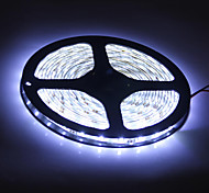 Waterproof 5M 300x3528 SMD  White Light LED Strip Lamp (12V)