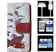 Bird Pattern Full Body Case+1 HD Screen Protector+1 USB Data Transmit and Charging Cable for iPhone 4/4S