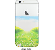 Transparent/Graphic/Special Design TPU Back Cover for iPhone 6