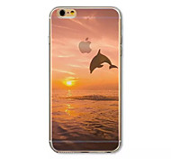 Dolphin Pattern acrylic Hard Case for  iPhone 6 Plus