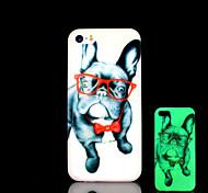 cane modello bagliore nel buio copertura per il iphone 4 / iphone 4 s