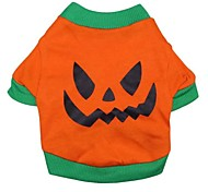 Katzen / Hunde T-shirt Orange Hundekleidung Sommer Halloween Cosplay