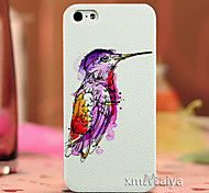 Color Drawing Fashion Style Protection Shell for iPhone5/5s  Maiya-P612