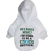 """Cool """"BIG BROTHER!"""" Pattern T-Shirt with Hoodies for Dogs (Assorted Sizes)"""