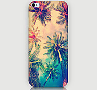 The Coconut Pattern Phone Back Case Cover for iPhone5C