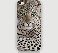 The Leopard Pattern Phone Back Case Cover for iPhone5C