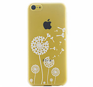 White Dandelion Pattern PC Material Phone Case for iphone 5C