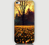 The Trees  Pattern Phone Back Case Cover for iPhone5C
