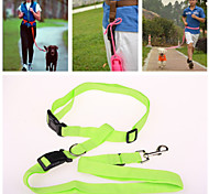 High Quality Durable Strong Nylon Pet Leashes for Dogs